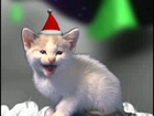 Christmas cats- Noel des chats  qui chantent