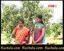 Ruchulu.com - Pachi Mamidikaya Vadalu