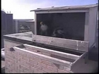 2012 Topeka Falcon Cam-June 5, 2012 @ 1902 hrs EST.