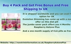 Raspberry Ketone Plus-8 Natural Fat Burners In 1 Diet Pill at a Massive Discount offer-Buy Now