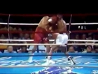 The fastest punching boxers in history