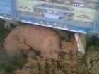 Kaşinhanin daki john deere ler