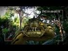 Piranhaconda Official Trailer