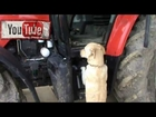The Best Tractor Driver on a Massey Ferguson 5470