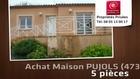 Vente - maison - PUJOLS (47300)  - 768m²