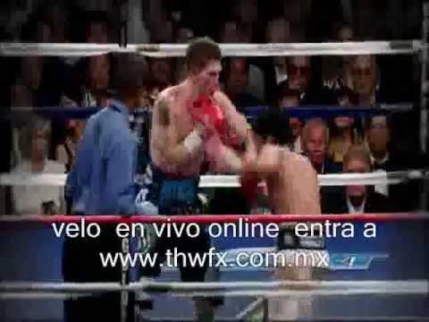 Donde ver Pacquiao vs Bradley en Vivo en Español Online HD | PopScreen