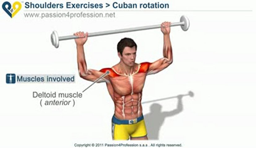 how to build muscle on your rotatry cuff