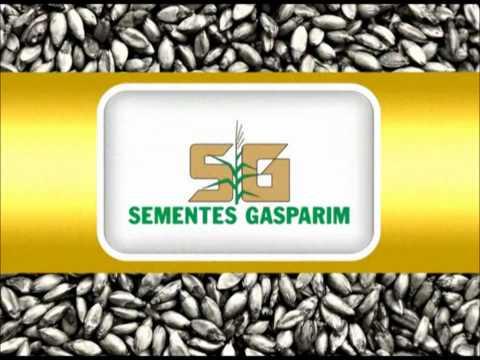 SEMENTES GASPARIM (GASP. PREMIUM) | PopScreen