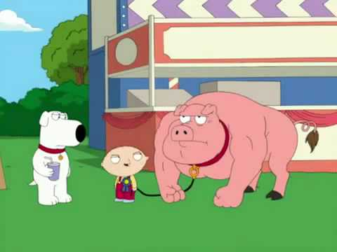 Family Guy - Stewie's Pig | PopScreen