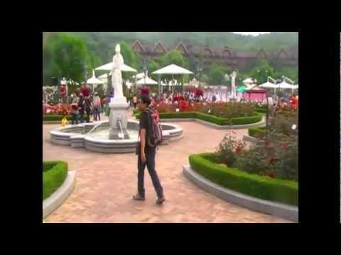 Musim Bunga Di Korea - Suiteholiday | PopScreen