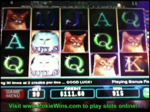 free casinos online slots game onlin