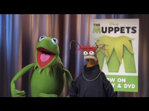 Holy Moly meets Kermit the Frog and Pepe the Prawn from The Muppets | PopScreen