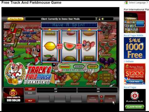 free casino video games no download no registration