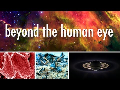 Seeing Beyond the Human Eye | Off Book | PBS | PopScreen