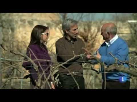 Bodegas y Viñedos Marcelino Serrano en
