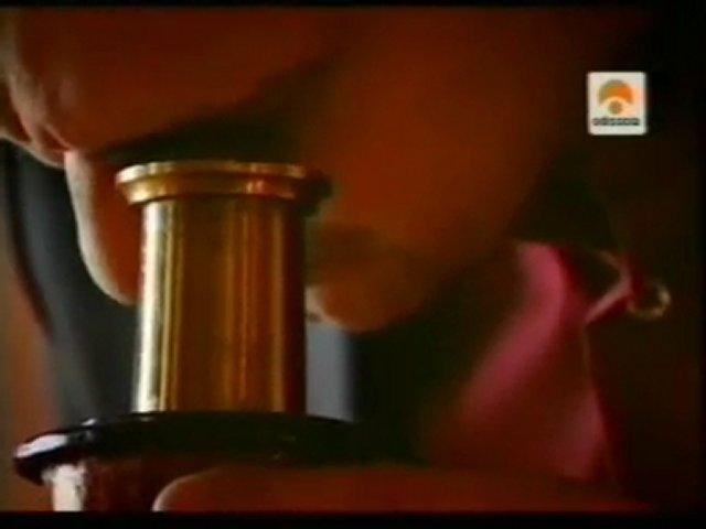 Historia de la celula: Robert Hooke | PopScreen