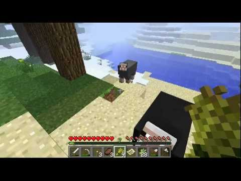 MineCraft: Episode 22: We Need Animals | PopScreen