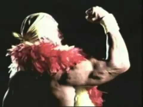 Hulk Hogan WWE Titantron | PopScreen