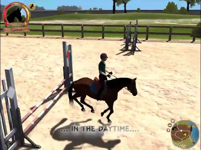 Show Jumping Horses Games Horse Star Show Jumping