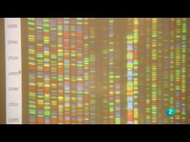 Farmacos y receptores celulares | PopScreen