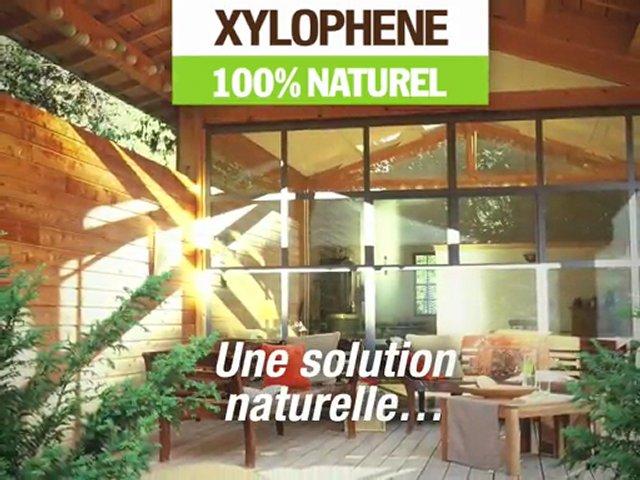 Traitement du bois xyloph ne 100 pourcent naturel popscreen - Xylophene 100 naturel ...