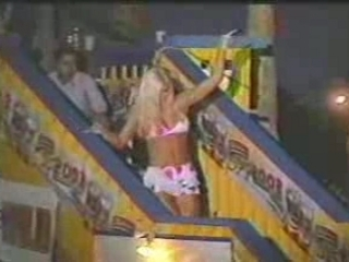 True answer torrie wilson girls gone wild apologise