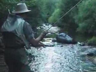 Comme mettre en nage le maïs pour la pêche de vidéo