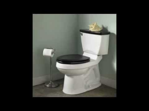 dual flush toilet reviews.flv | PopScreen