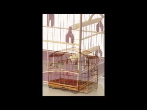 Gaiolas de Luxo | PopScreen