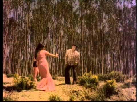Tamil Superhit Classic Song - Pattanathu Mappillaikku - Anbe Aaruyire - Sivaji Ganesan, Manjula | PopScreen