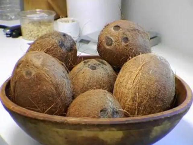 [Image: eG1tMDQzMTI=_o_how-to-crack-a-coconut.jpg]