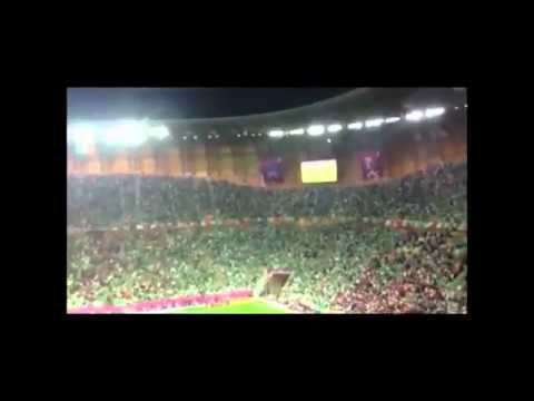 Irish Fans Singing Fields Of Athenry | PopScreen