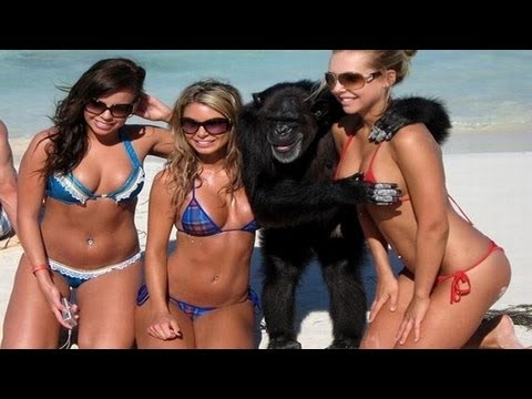 Girl Fails Pictures Girl's Fail Compilation 2012