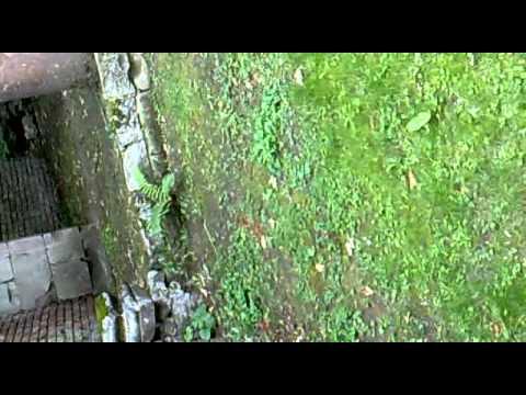 Virginia Water, Leptis Magna | PopScreen