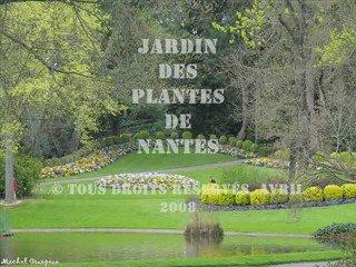 Jardin des plantes nantes 0001 popscreen for Jardin des plantes nantes de nuit