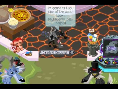 For Animal Jam Members Accounts and Password
