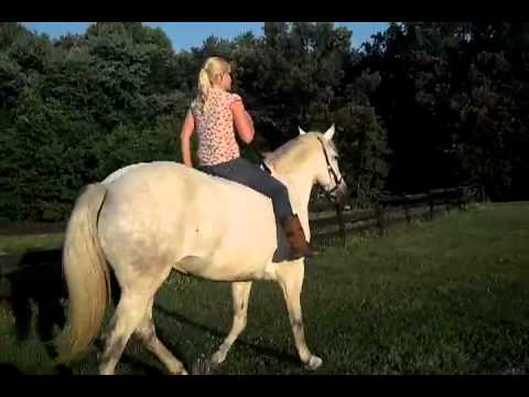 hot girl bareback on horse | PopScreen