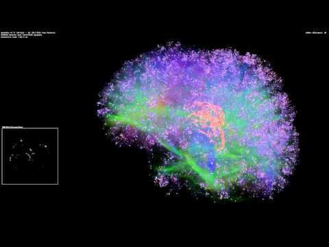 Artificial Brain Simulation - Thalamocortical System, 8 Million Neurons - 1.4 Billion Synapses