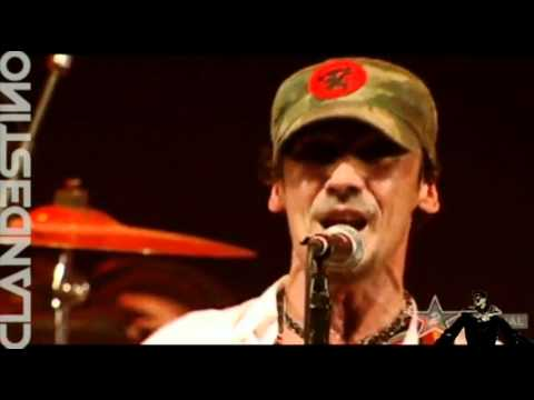 Manu Chao - Clandestino ( Live HQ ) | PopScreen